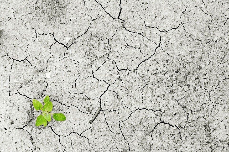 FEG firma la dichiarazione d'impegno sul cambiamento climatico promossa da Assifero